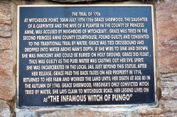 Summary plaque on the base of Sherwood's Statue.