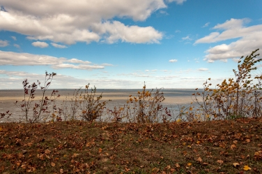 The Potomac River from Stratford Hall, seat of the Lee Family, on the Northern Neck.