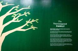 """The """"Thorowgood Family"""""""